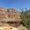Grand Canyon Scenic Helicopter Ride